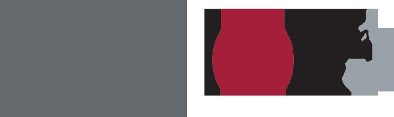 Logo IFCE Institut Français du Cheval et de l'Equitation