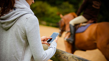 DIFF-actu-focus-infos-chevaux