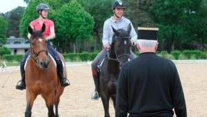 exceptionnellement en 2017, préparez le DEJEPS avec les chevaux de l' ESCE saumur