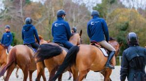 Formation élève école supérieur du cheval et de l'équitation à saumur