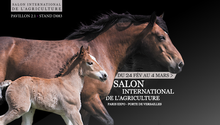 Salon agriculture 2018 cheval