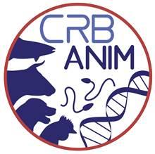 Logo CRB anim