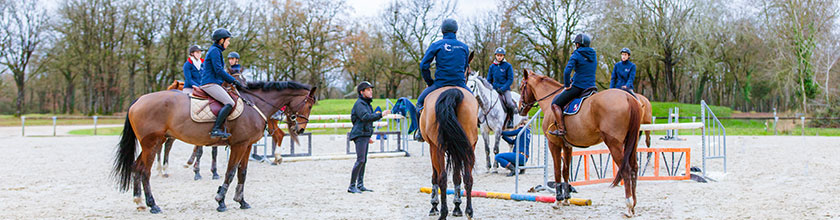Formation equitation