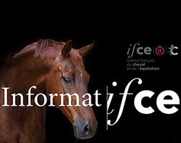 S'inscrire à la lettre d'information de l'Ifce