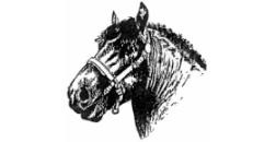 'union des éleveurs de chevaux de la race ardennaise