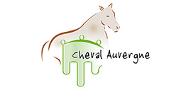 Association Nationale du Cheval de Race Auvergne