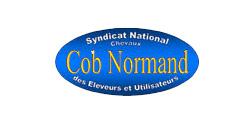 Syndicat National des Eleveurs et Utilisateurs de Chevaux Cob Normand