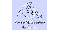 Association Races mulassières Poitou