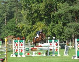 Cavalier préparateur de jeunes chevaux en concours