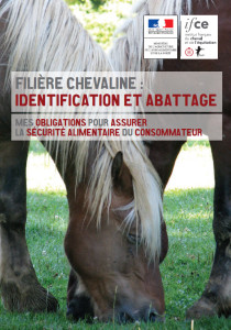 SIRE-DGAL-flyer-identification-abattage-equides