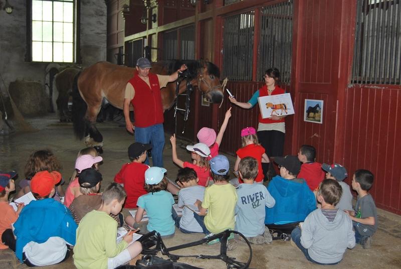 Groupe d'enfants lors d'une activité pédagogique au Haras national de Cluny