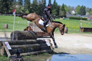 compétition haut niveau cheval