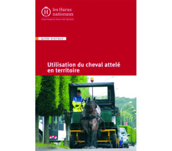DIF_couv_cheval-territorial