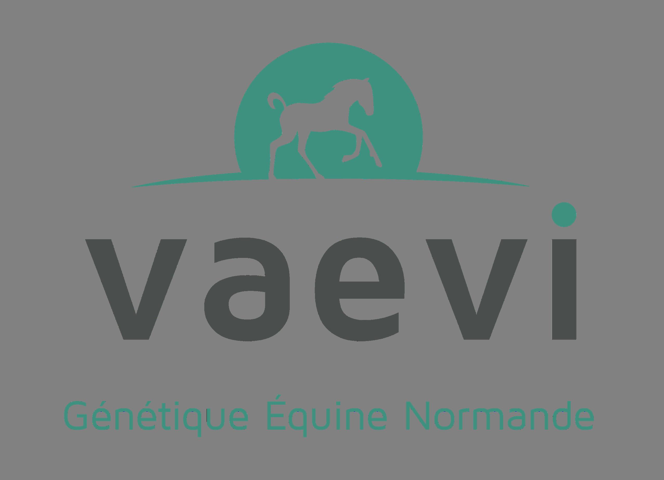 Logo VAEVI_ sans cadre fond clair