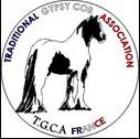Logo Gibsy Cob