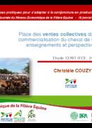 Place des ventes collectives dans la commercialisation du cheval de selle : enseignements et perspectives