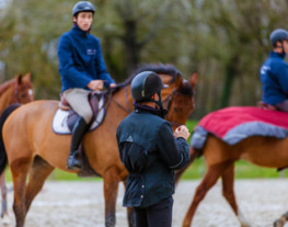 Cour collectif à cheval