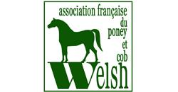 REG-Welsh
