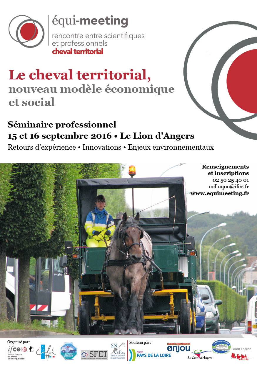 DIF Affiche Equimeeting cheval territorial 2016