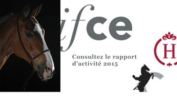 Rapport d'activité 2015 de l'Ifce