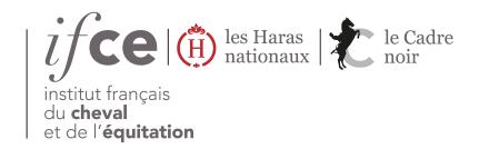 """Résultat de recherche d'images pour """"logo institut du cheval et de l'équitation"""""""
