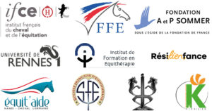 DIF logo orga Equimeeting médiation 2018