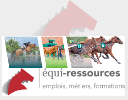 equi-ressources emploi stage cheval