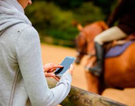 Infos chevaux : Accédez gratuitement aux informations sur les chevaux