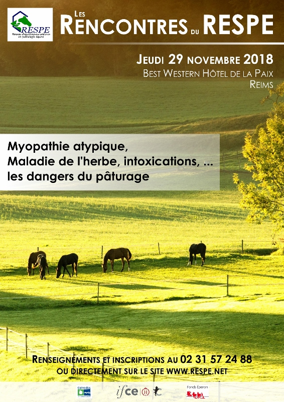 DIF AfficheRencontres2018