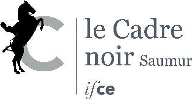 CN-Logo_simple_Quadri
