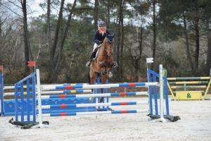 concours de saut d 39 obstacles labellis pour jeunes chevaux. Black Bedroom Furniture Sets. Home Design Ideas