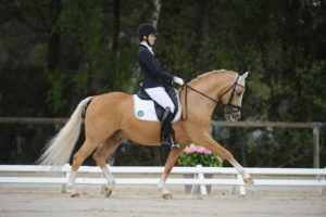 SPORT-TABEA SCHROER dressage poney Saumur