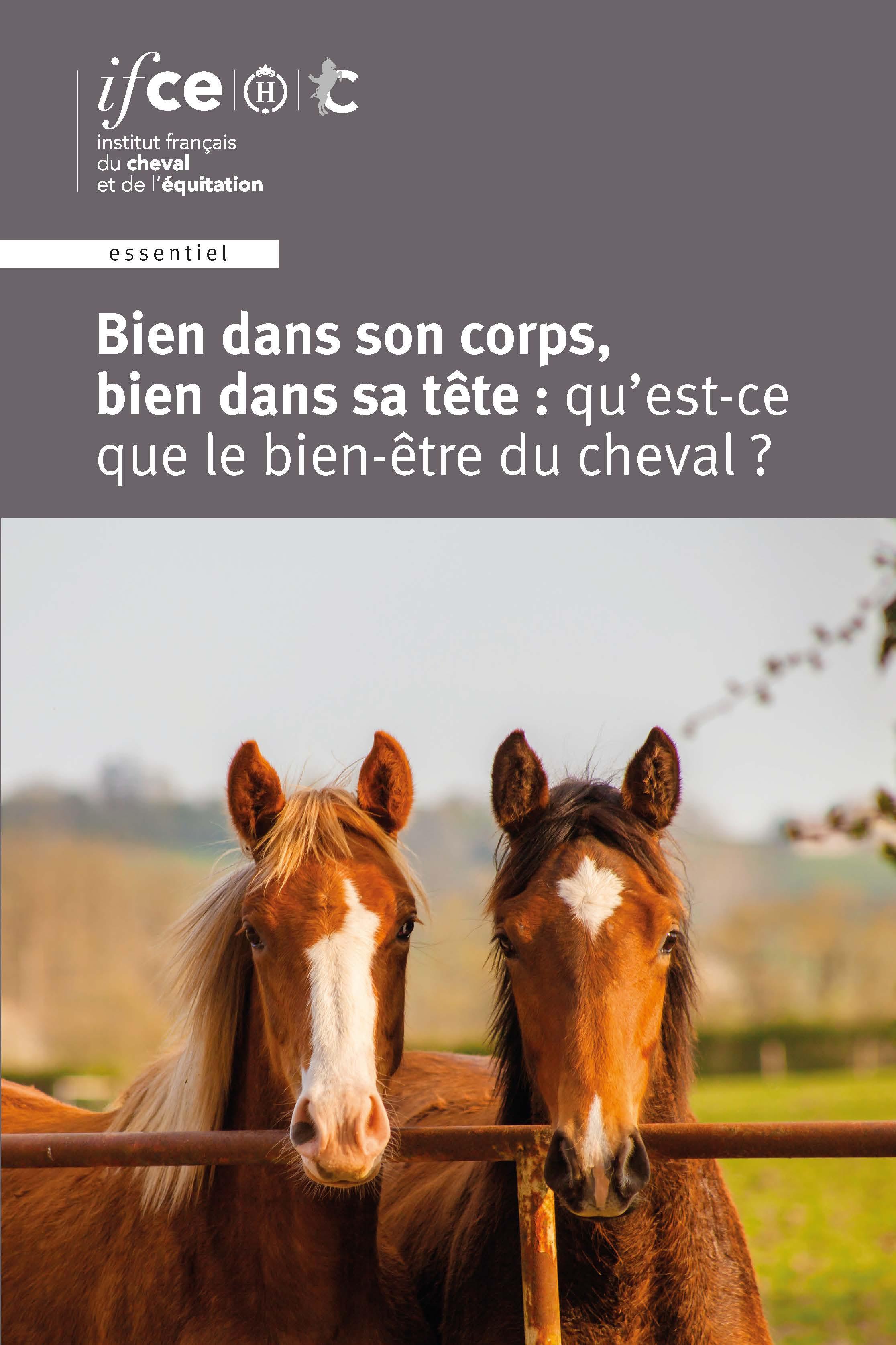 DIF_couv_bien-être