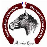 Logo Criollo