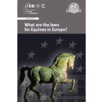 DIF_couv_laws-Europeok