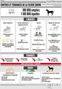 infographie les chiffres clés de la filière