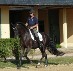 José Letartre et Swing Royal ENE-HN préparation1 web