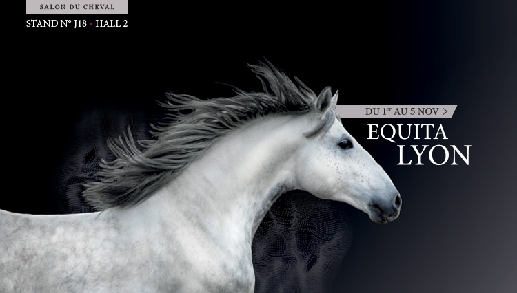 Rencontrez l 39 institut au salon du cheval equita lyon l for Salon du cheval lyon 2017