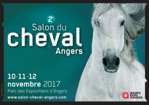 LLA_Salon-du-cheval_2017