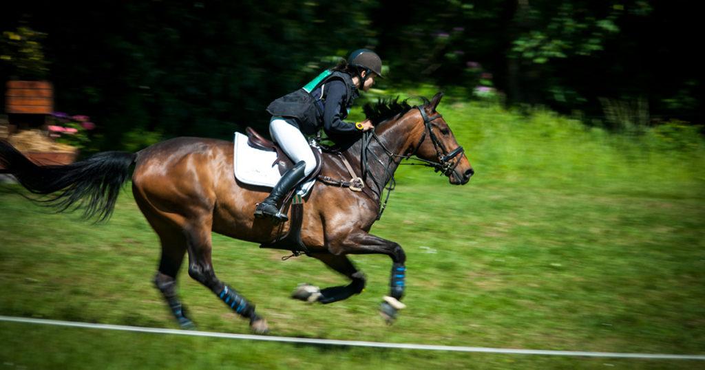 cheval athlète