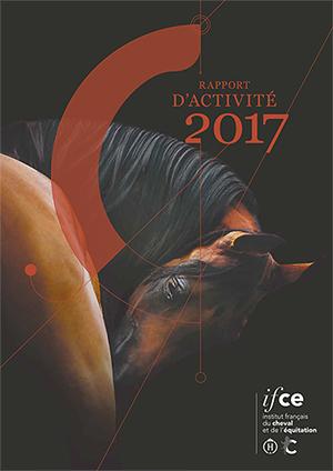 Rapport d'activité de l'Ifce 2017