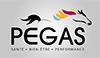 LOGO-PEGAS JSIE