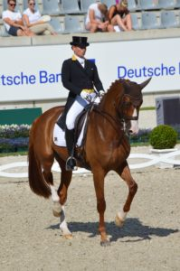 FOR-DEJEPS-VOYAGE PEDA DRESSAGE