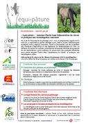 REC-Newsletter Equi-pâture n°01