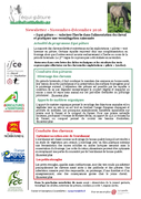 REC-Newsletter Equi-pâture n°07