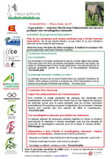 REC-Newsletter Equi-pâture n°10