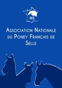 Courrier Poney Français de Selle