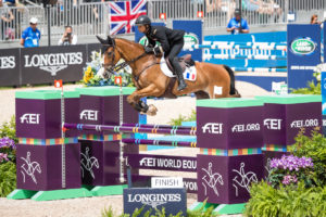 FEI World Equestrian Games™ Tryon 2018. Concours Complet. Jumping Thibaut VALLETTE LT COL (FRA). QING DU BRIOT ENE HH