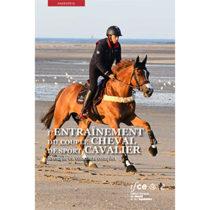 L'entraînement du couple cheval de sport/cavalier