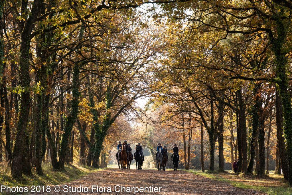 FOR- Jeunes chevaux FI Saumur FLORA CHARPENTIER